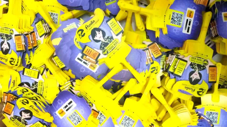 Kipas Promosi Bahan Plastik PVC Prodia